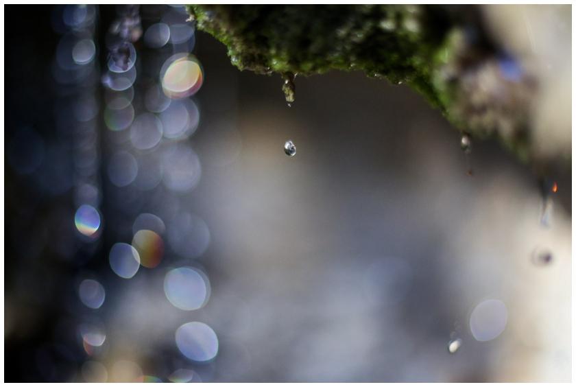 2014 Reflections-2_WEB.jpg
