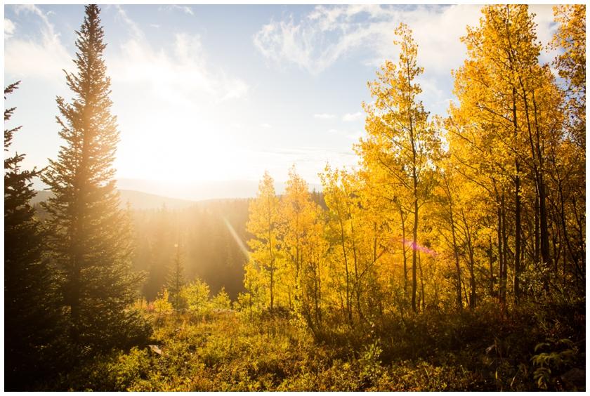 Colorado Honeymoon-99_WEB.jpg