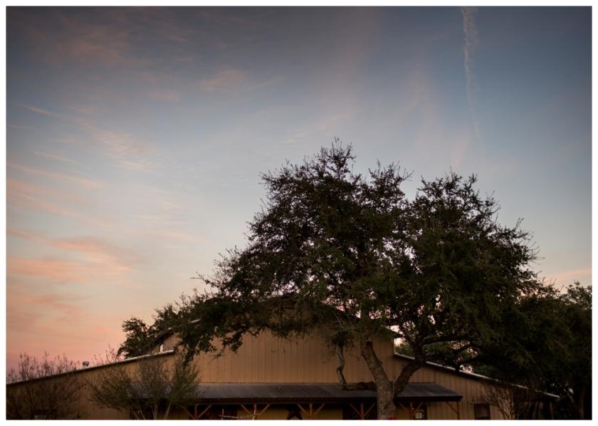 Reunion Ranch Wedding- Cortney & Scott_0018